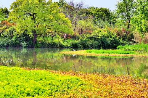 国家湿地公园规划论证评估报告