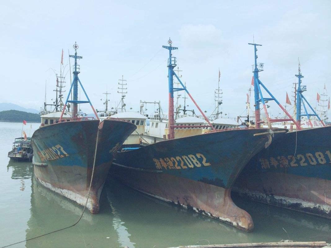 船舶鉴定 渔船鉴定 挖沙船鉴定评估