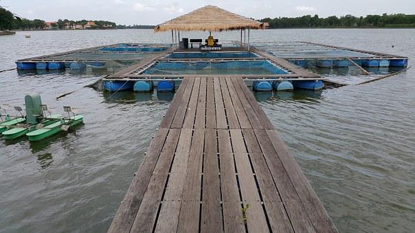 渔业污染评估
