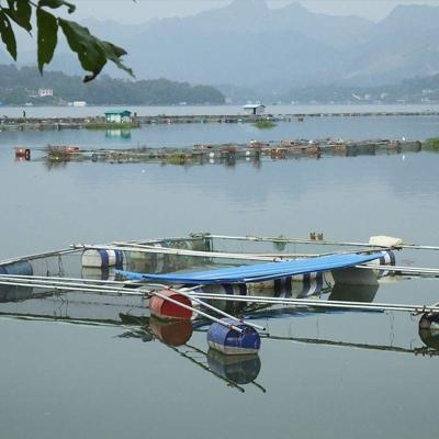 水产养殖污染损失鉴定评估报告