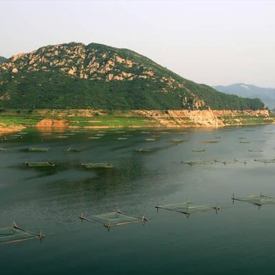 水库渔业评估