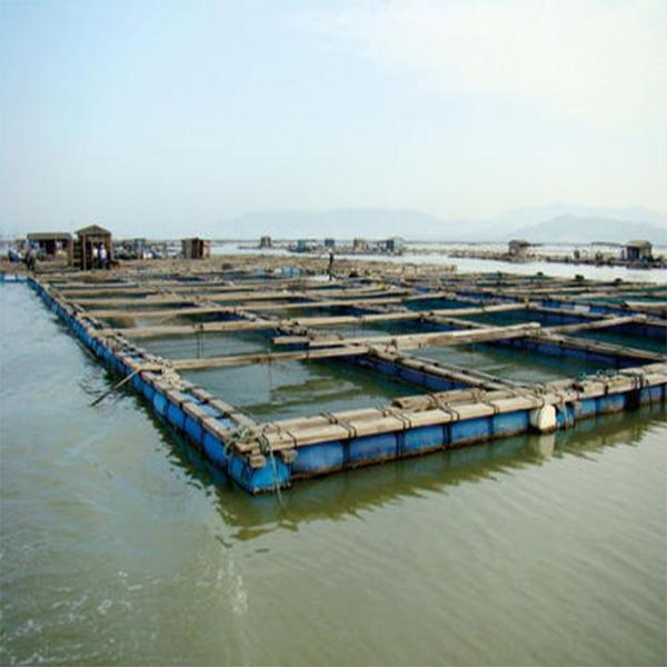水体养殖物鉴定  中国渔业协会和中国水产协会会员单位